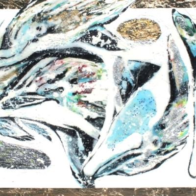Apo Din Dolphins