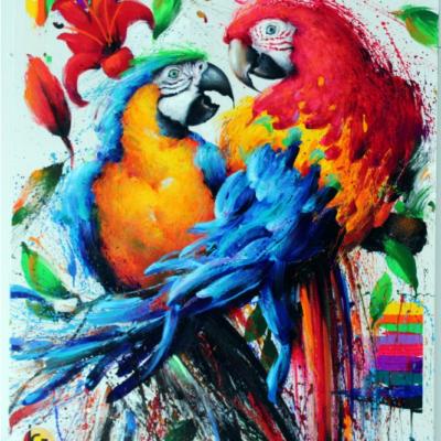 Igli Jοrgo Parrots 2