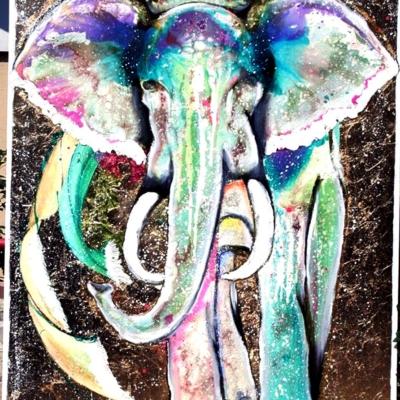 APO DIN Elephant